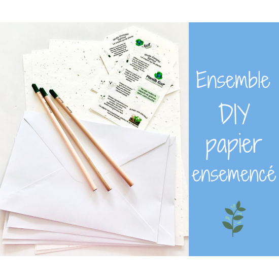 Ensemble DIY carte de papier ensemencé