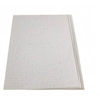 Ensemble de feuilles de papiers ensemencés